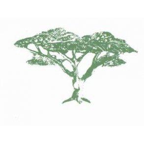 Æteriske planteolier og deres betydning